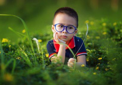 Dziecko z całościowymi zaburzeniami rozwoju-diagnoza, terapia i wsparcie formalne
