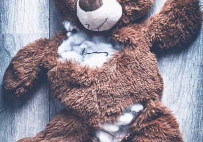 NAGRANIE – Przykłady zachowań agresywnych dzieci – jak je rozumieć, jak sobie z nimi radzić?